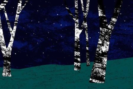 сергиев посад,сумерки,вечер,ночь